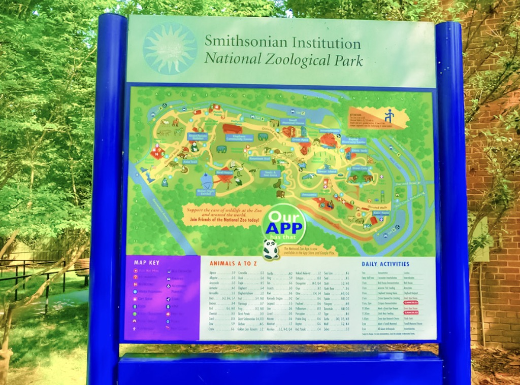 Smithsonian National Zoo ~ First Timers Guide