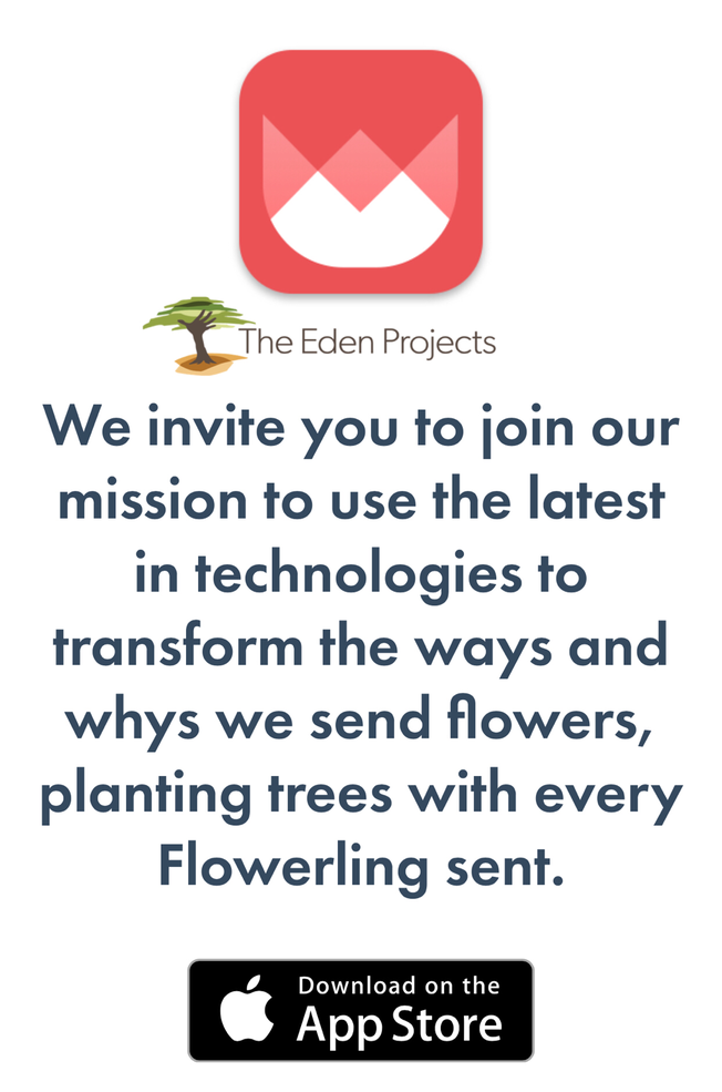 Send Flowers The EcoFriendly Way With Flowerling App!